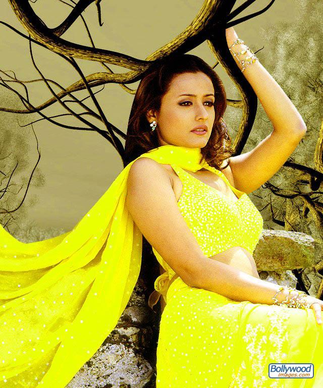 Namrata Shirodkar - namrata_shirodkar_016